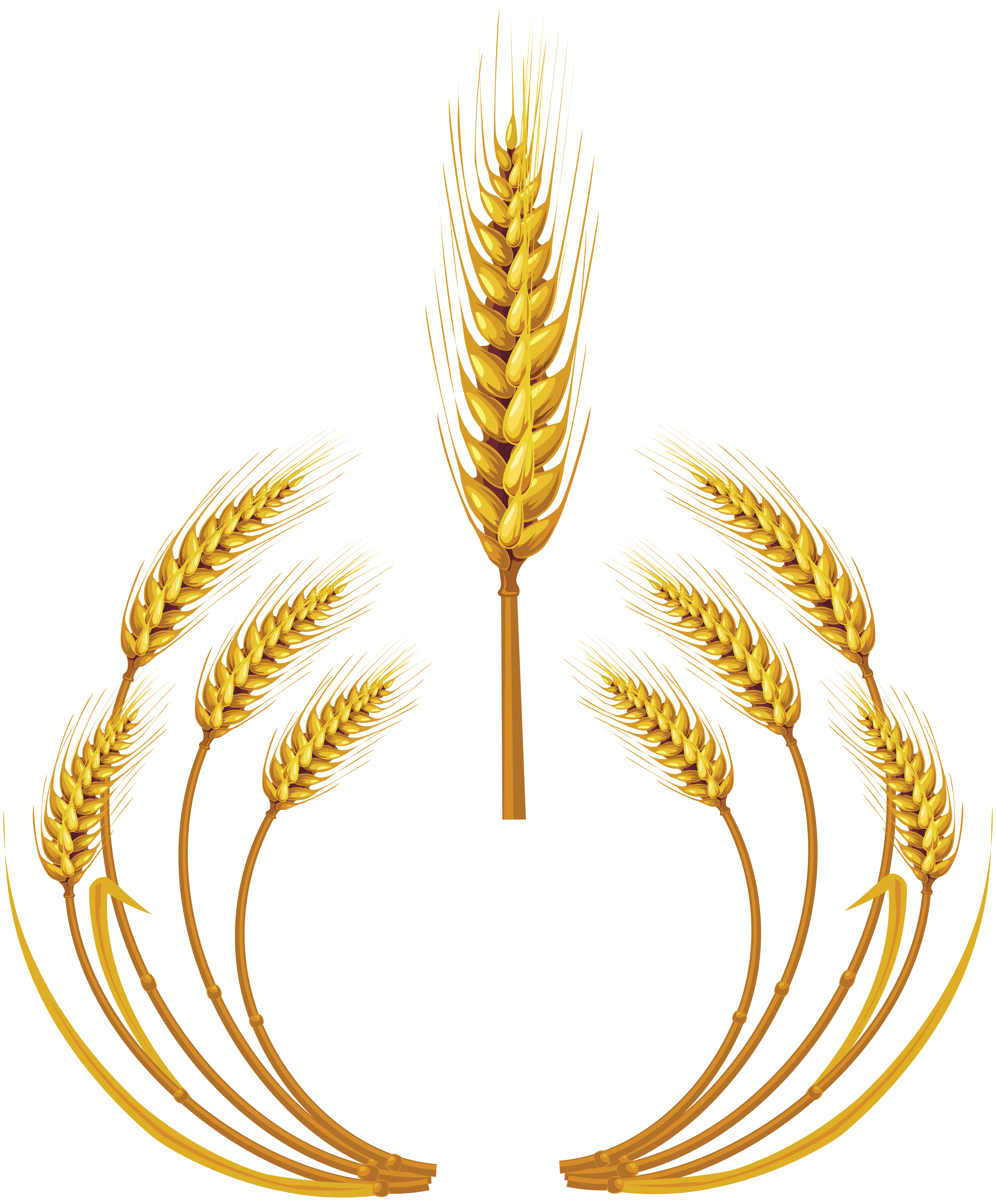 Wheat Logo Png