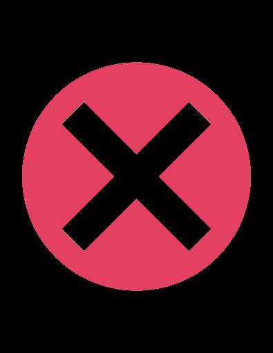 16x16 X Icon Vector