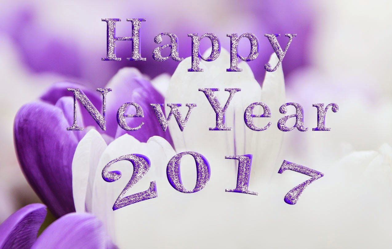 Download And Use 2017 Happy New Year Png Clipart