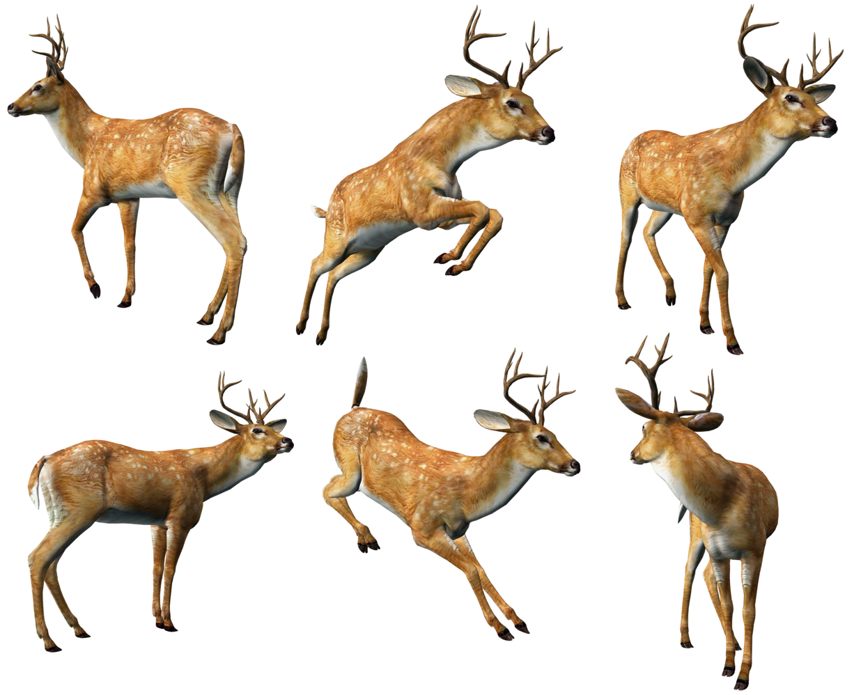 3d Deer Animal download 3d animal PNG images