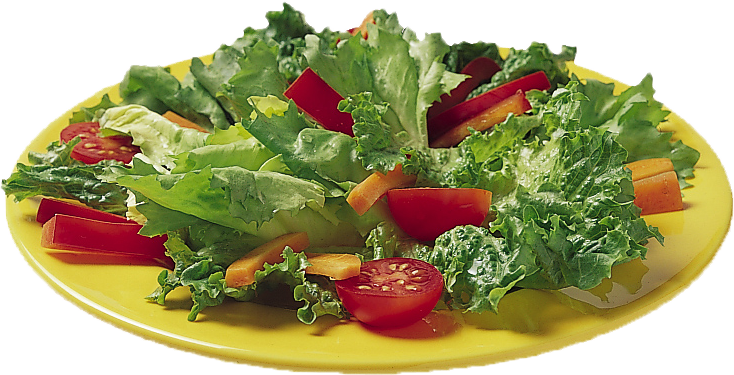 5aday salad png