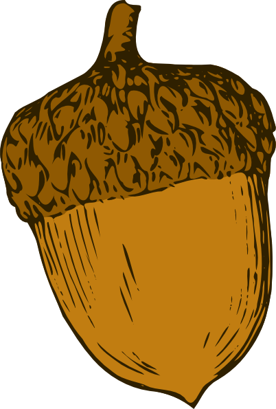 Acorn Png Icon image #37321