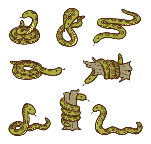 Anaconda Visual Images In Different Drawings