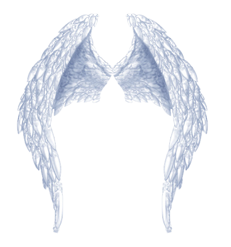 File Angel PNG image #19596
