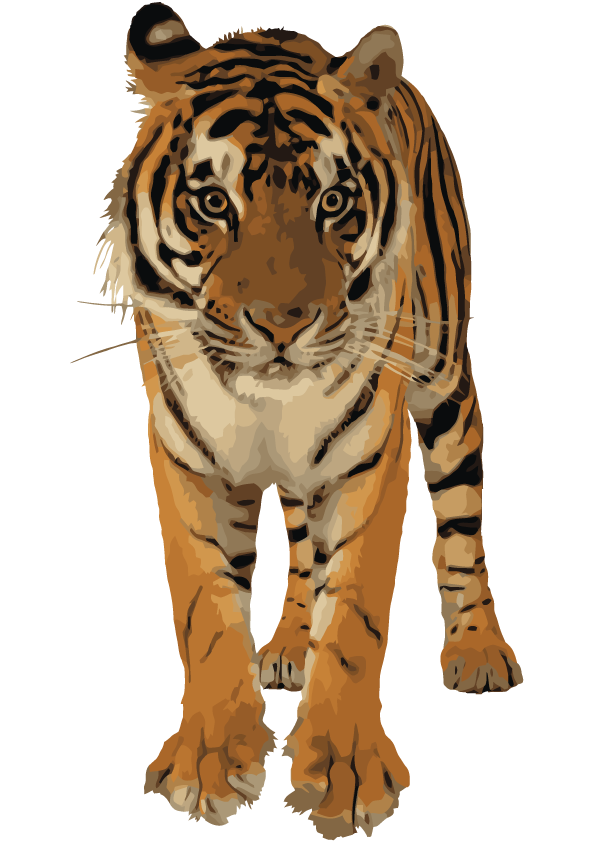 Clipart Best Png Tiger image #39200