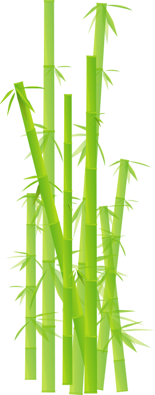 Browse And Download Bamboo Png Pictures image #40484