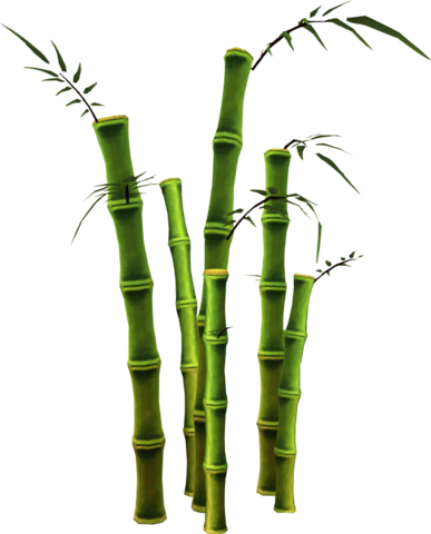 Bamboo File PNG image #40487