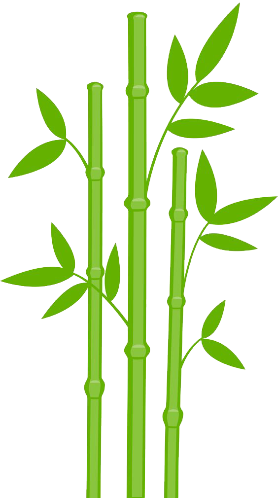 Bamboo Png Designs image #40464