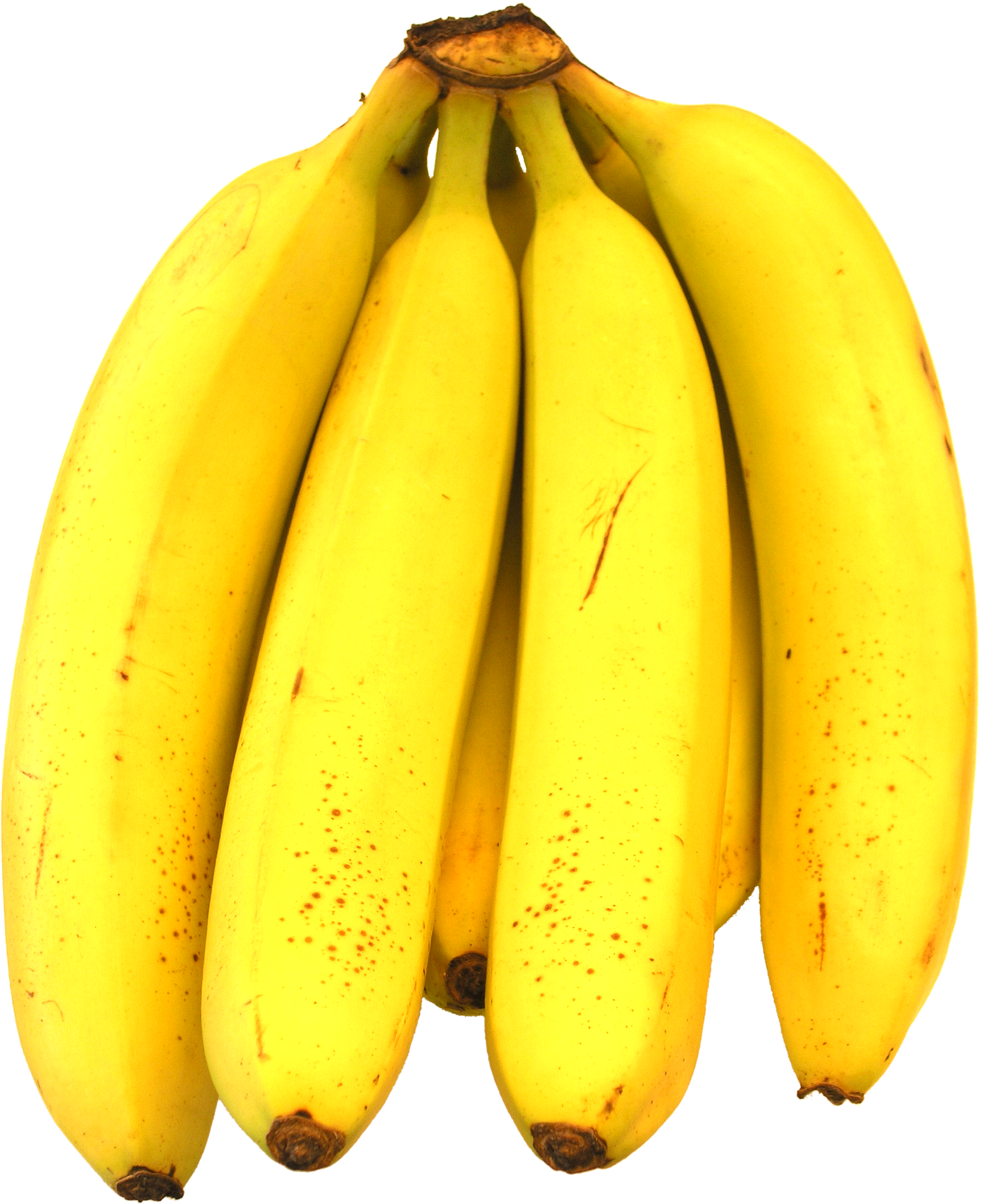 Download Banana Latest Version 2018 image #27760