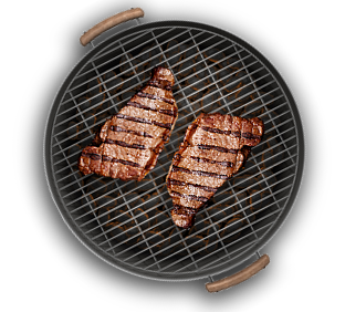 barbecue grill png