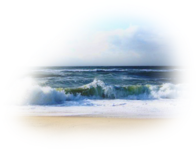 Beach Sea Png image #41218