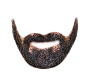 Download Picture Beard