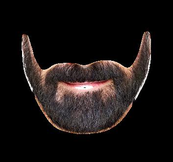 Beard Png image #44585