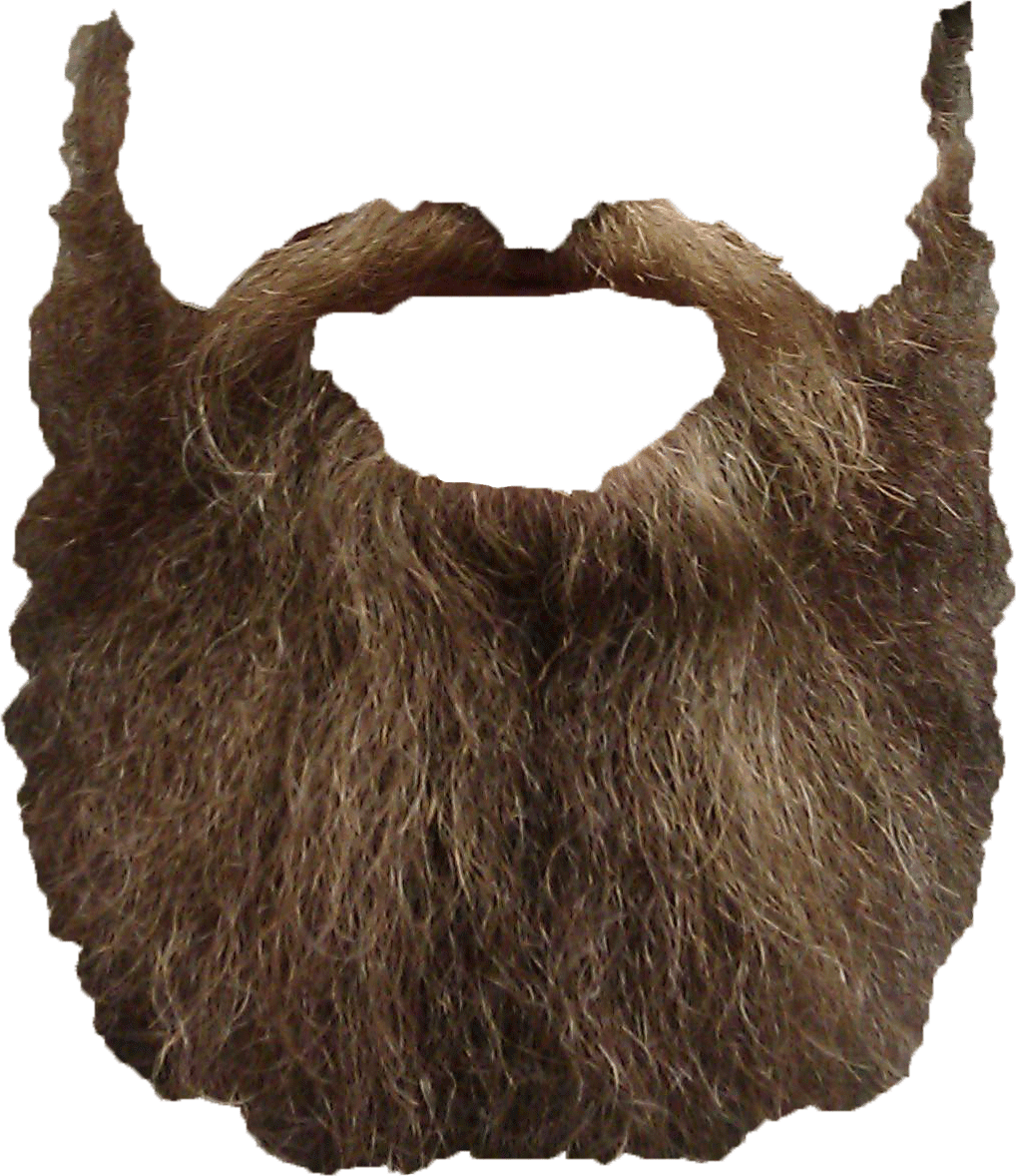 PNG Transparent Beard image #44590