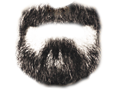 Beard Png Beard by bigburgy