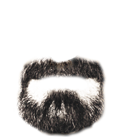 Beard Transparent Png Pictures Free Icons And Png