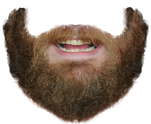 Beard Png Clipart Download image #852