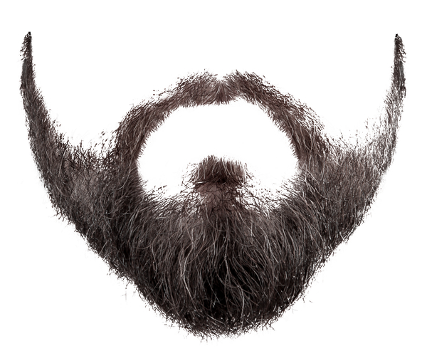 Beard PNG Photo image #857