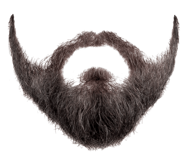 beard png pic