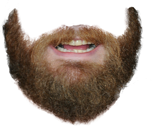 Beard Png Picture image #44578