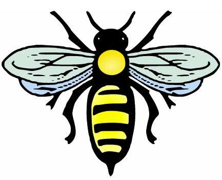 Bee Png Vector image #29442