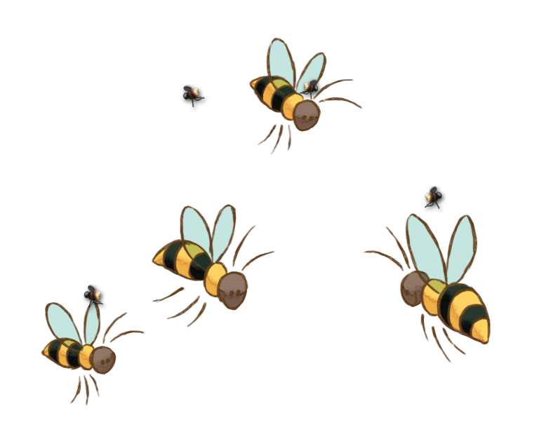 Bee Image PNG