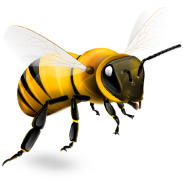 Bee Png Available In Different Size 28 image #45416
