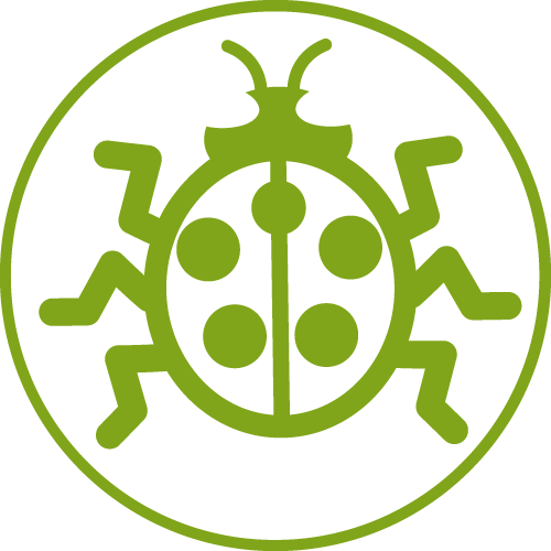 Svg Icon Beetle