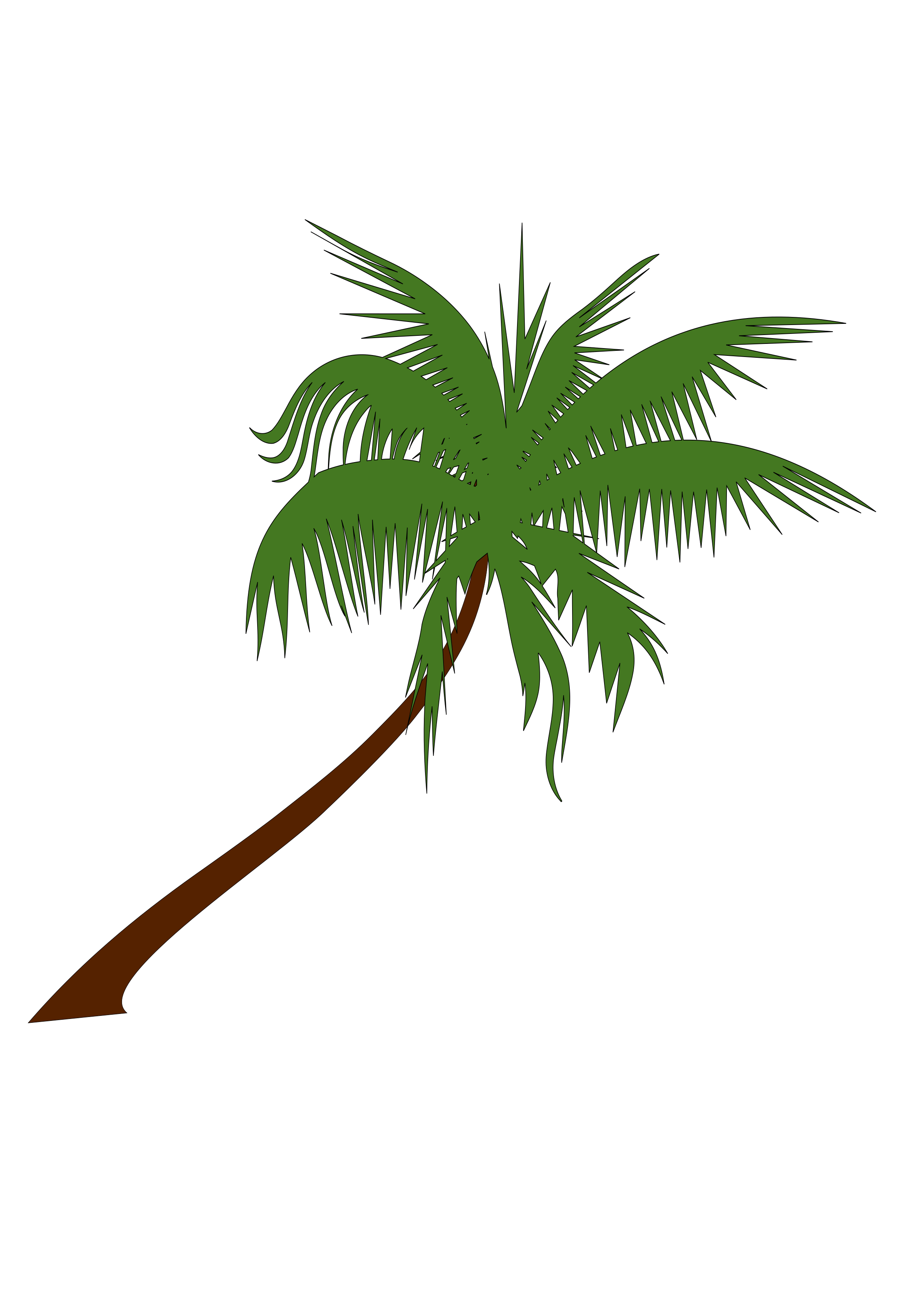 Best Free Coconut Tree Png Image image #46408