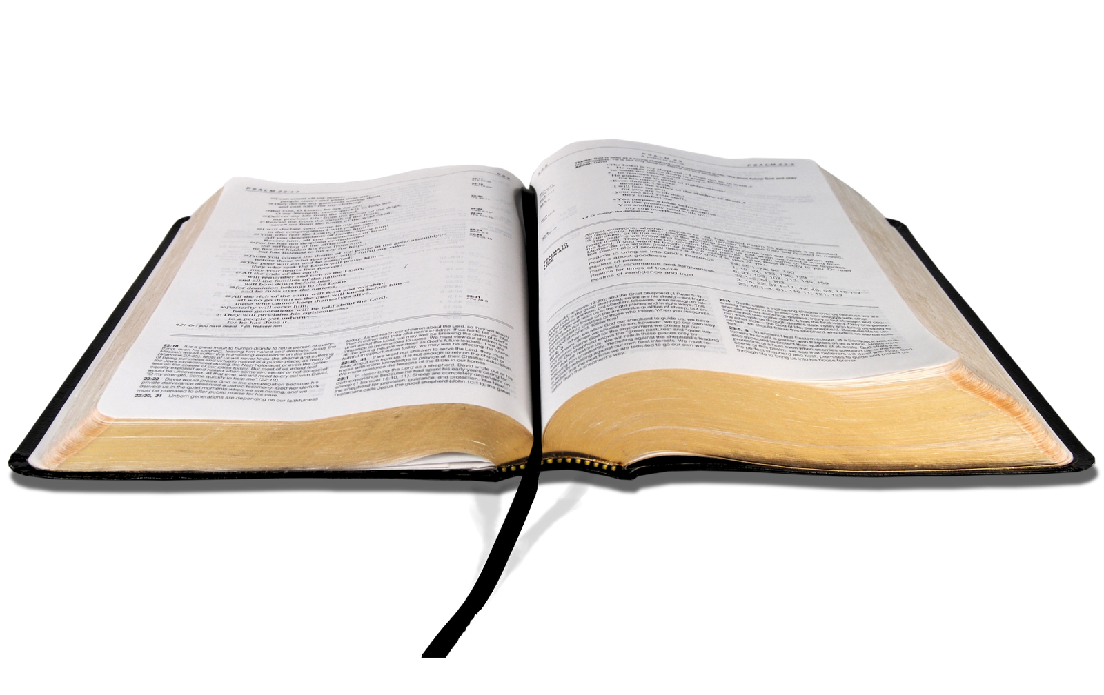 Use These Bible Vector Clipart image #35043