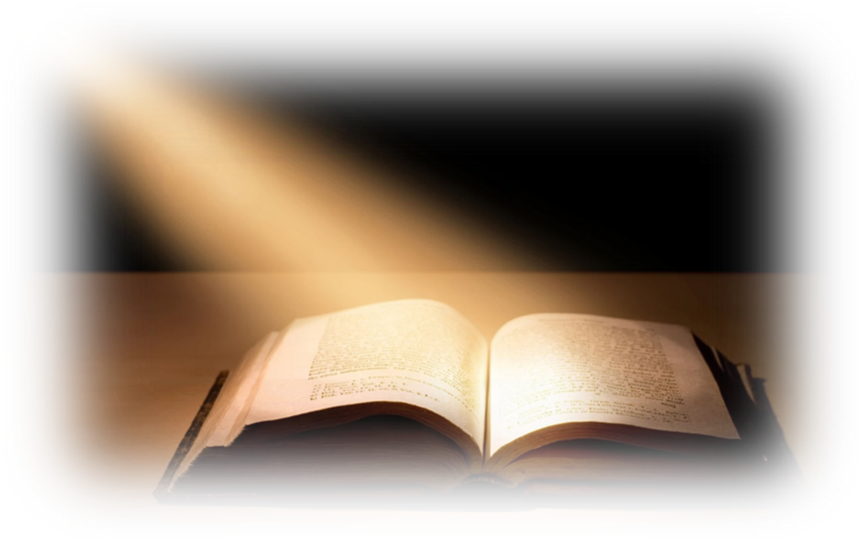 Bible Study 6 version 6.0.21.1896 by Olive Tree Bible ...