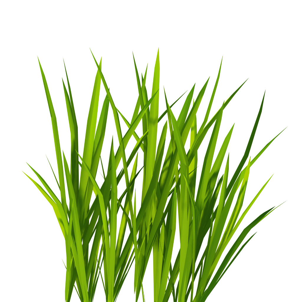 Billboard Grass Png image #4763