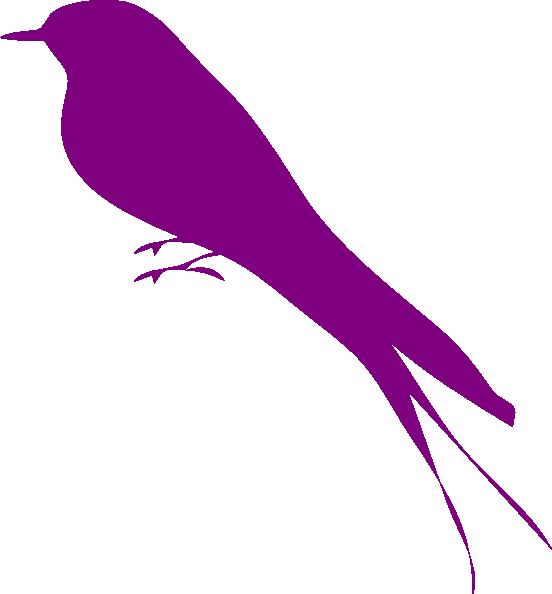 Bird Purple Photos Icon