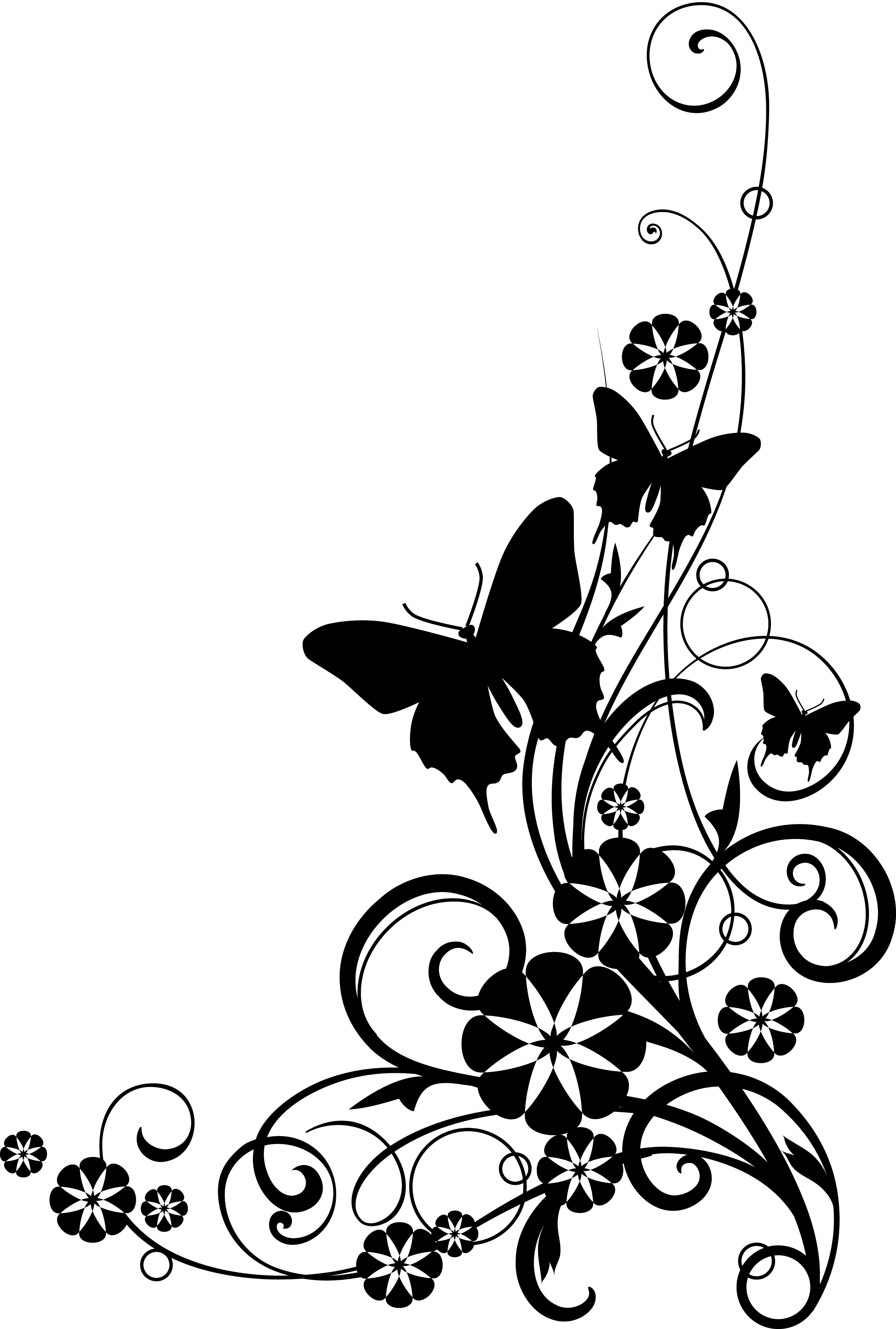black and white flower border clipart  41803