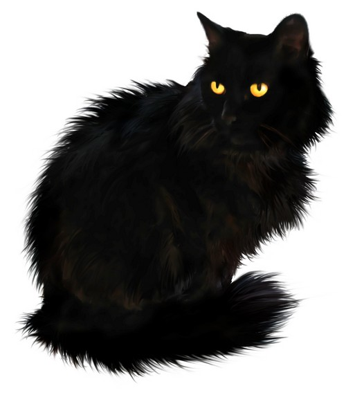 Best Free Black Cat Png Image #30359 - Free Icons and PNG ... Facebook Twitter Icon Transparent Background