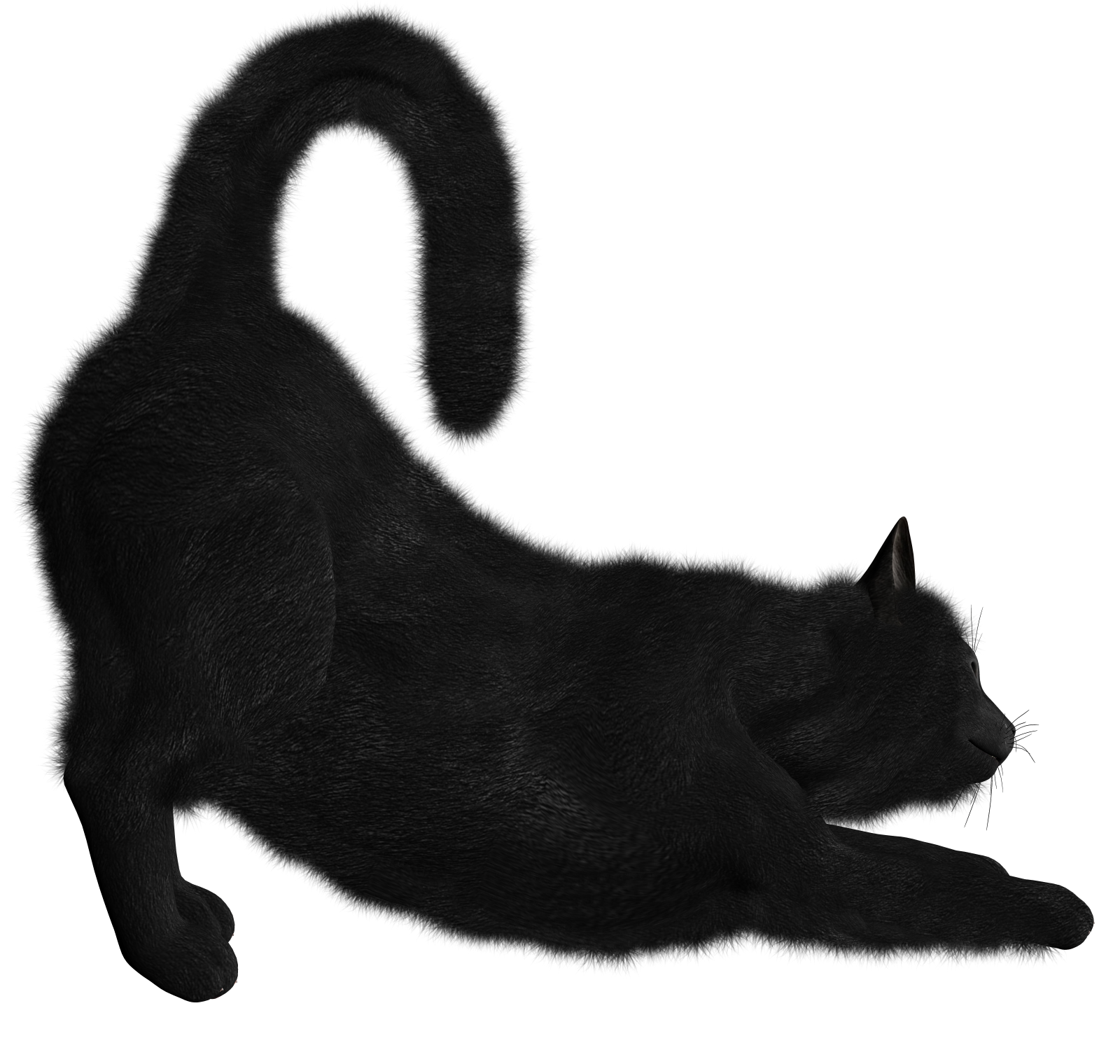 Png Black Cat Collection Clipart image #30364