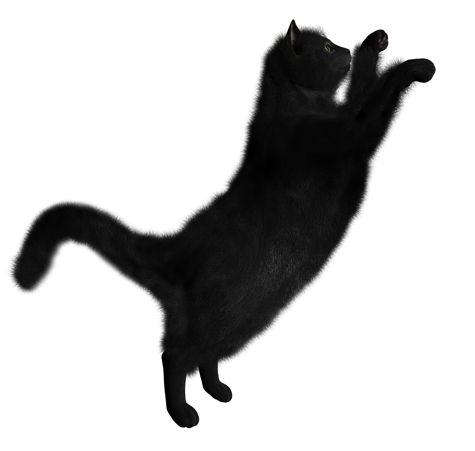 Download Free High-quality Black Cat Png Transparent Images image #30348