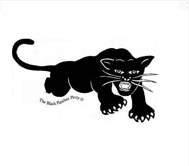 Black Panther Icon Png Transparent Background Free Download 10616 Freeiconspng
