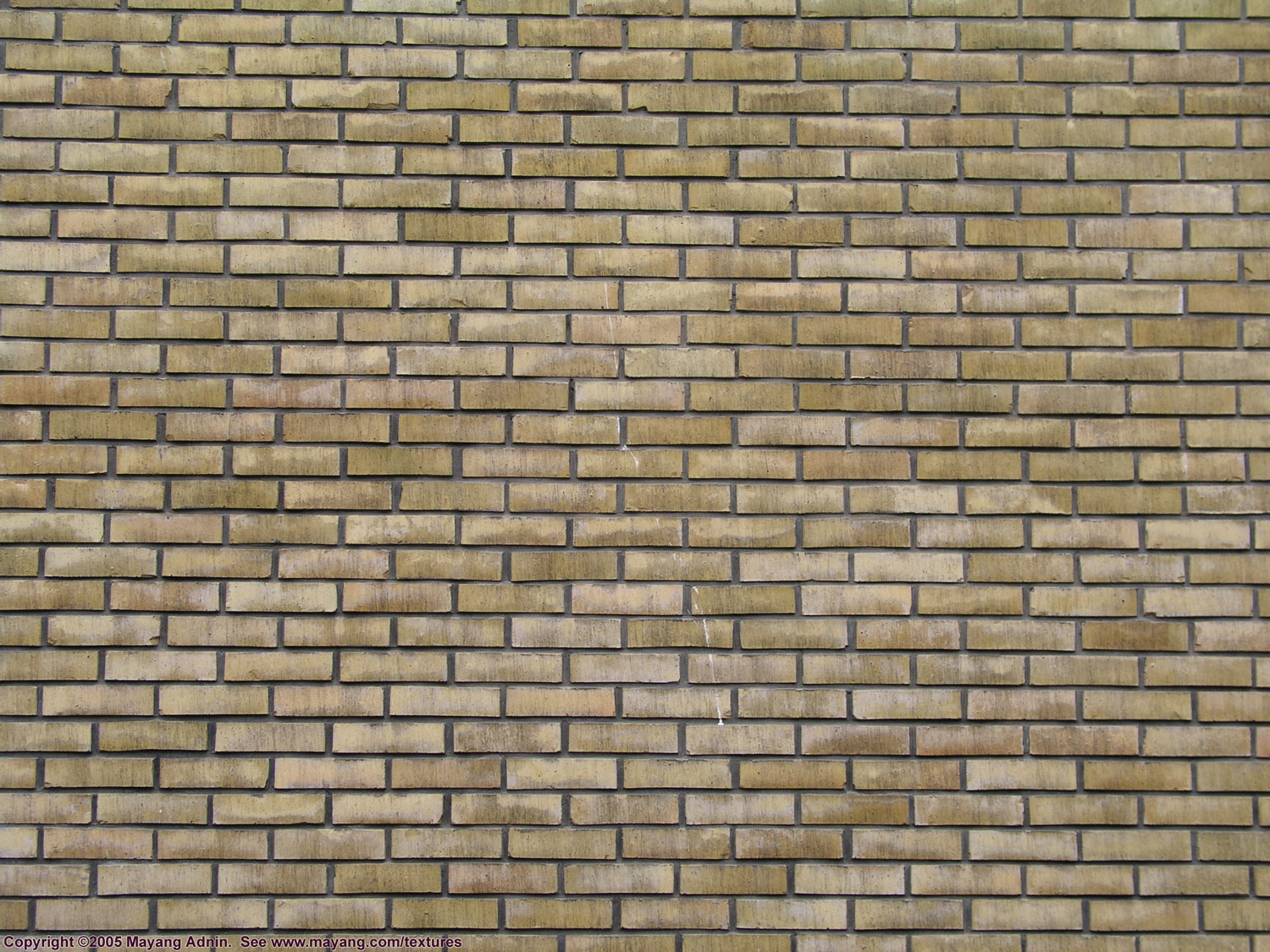 Download Free Images Brick Texture image #23877