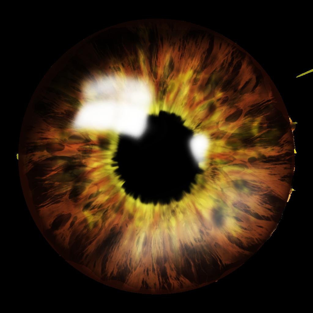 Brown Eye Png File image #42306