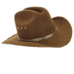 Brown Hat Cowboy Icon Png image #7736