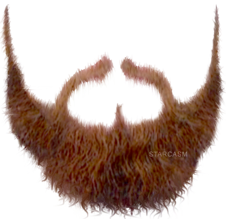 brown nice beard png