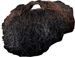 bushy beard png picture