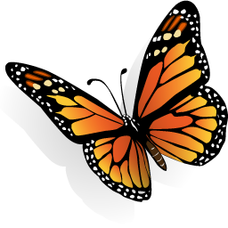 Download Icon Butterfly Png