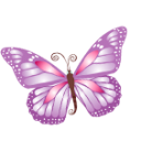 Butterfly Svg Free image #17696