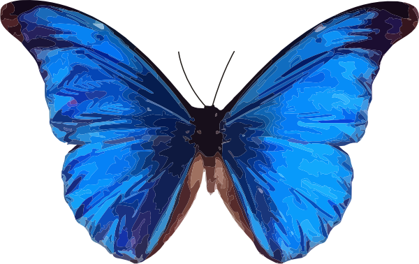 Butterfly Icon Png image #17701
