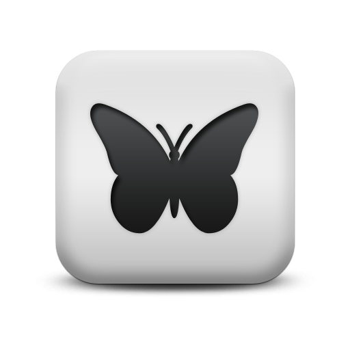 Butterfly Icon Png image #17702
