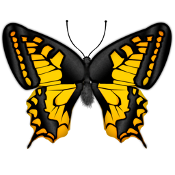 Butterfly Png Vector image #17680
