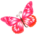 Download Ico Butterfly image #17681
