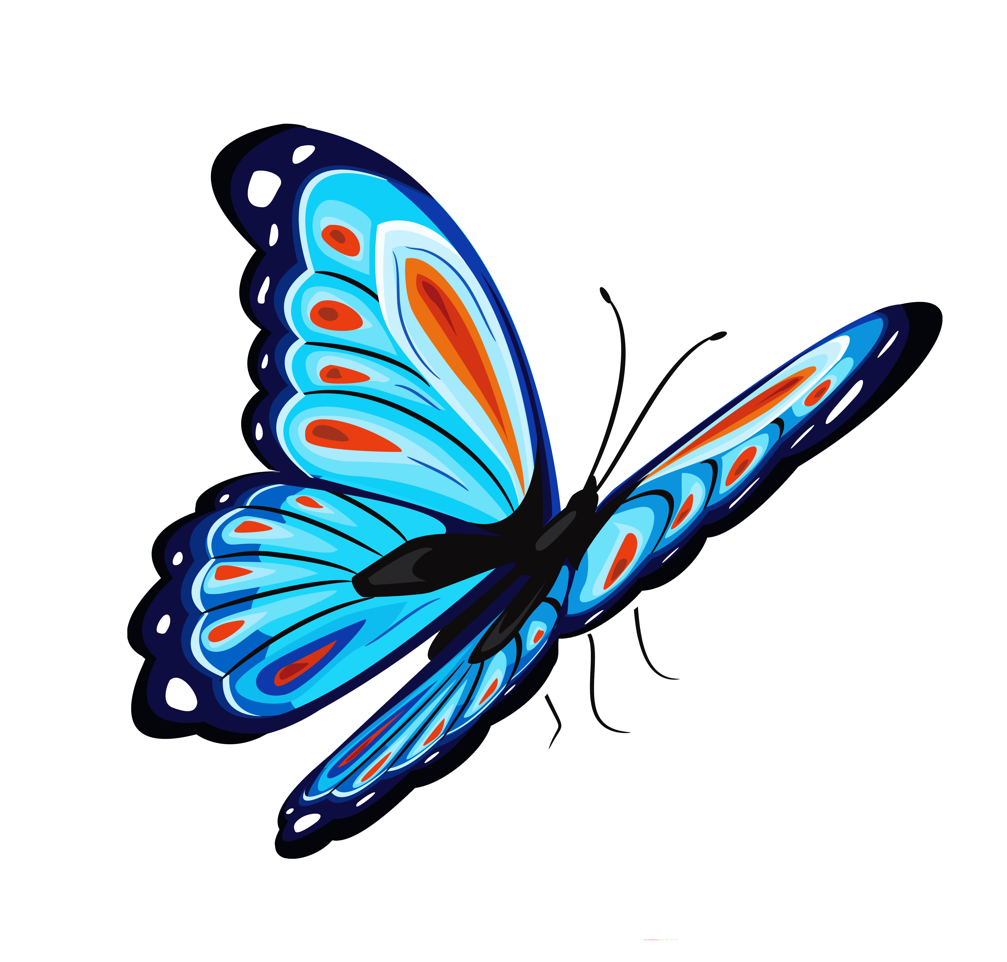 Best Free Butterfly Png Image image #6732